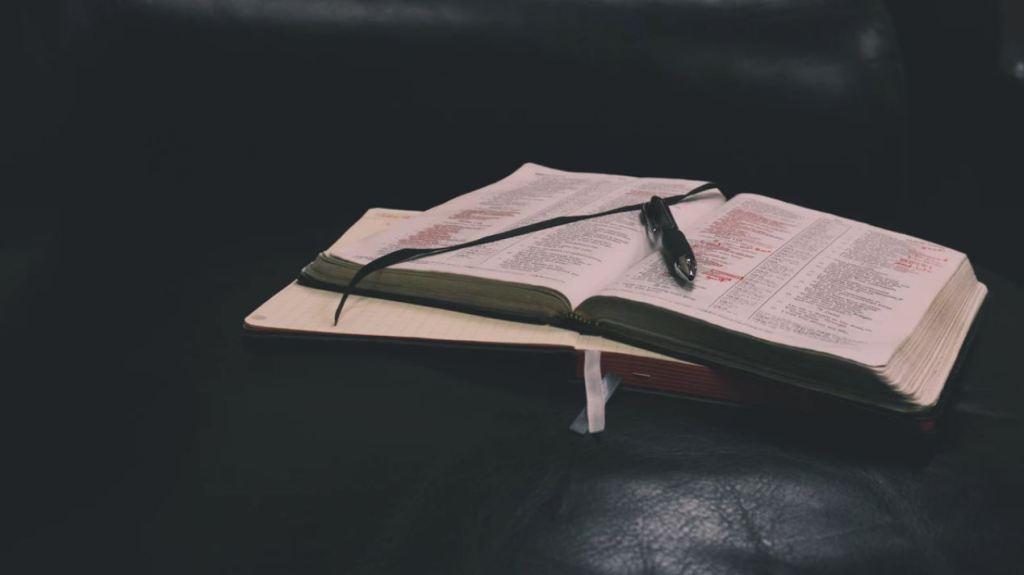 How Reading Rewards The Reader