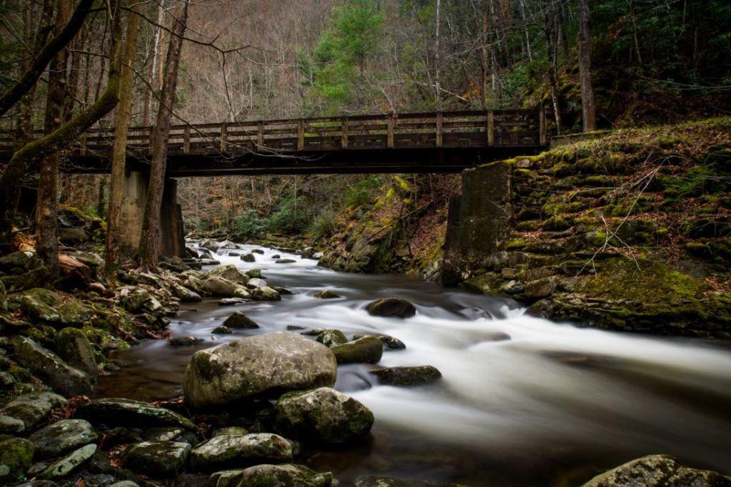Tinker Creek