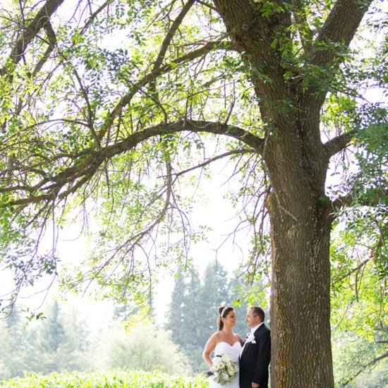 beautiful willow tree, bride and groom, couple, farm