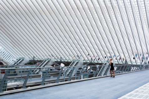 liége_guillemins_railway_station_16