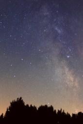 Sternfleder mit Blick ins Zentrum der Milchstraße