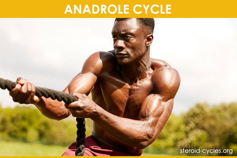 Anadrol Cycle: Legal Oxandrolone Steroids for Bulking Cycle [2020]