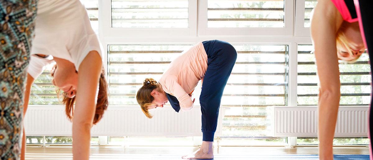 Permalink to: Yoga voor volwassenen in Wolvega