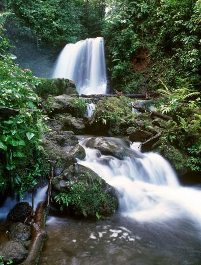 waterfall web fxtrt