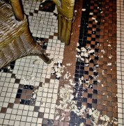The floor was almost completely covered in nut shells