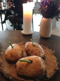 Nordic Coconut (Potato Consume)