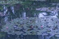 Monet_04