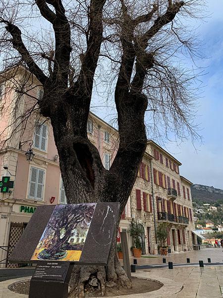 L'arbre de Vence - Chaïm Soutine