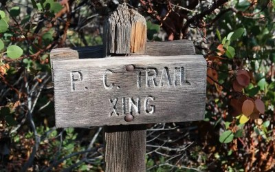 PCT: Day 192: In it to win it! Part 2
