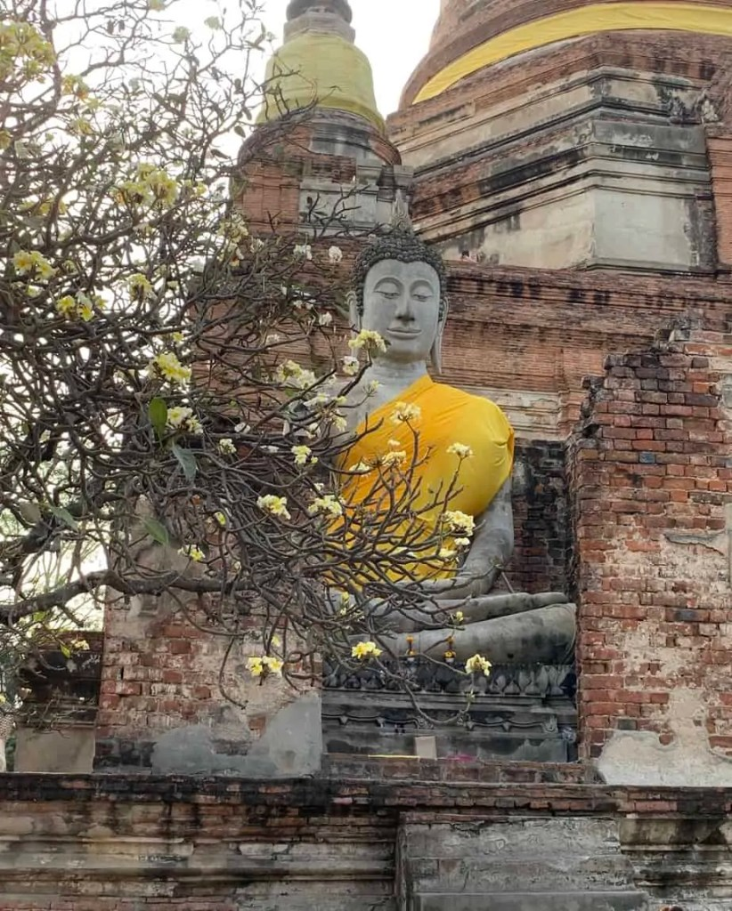 Buddha next to a blooming tree
