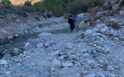 PCT: Day 26: Trail?  What trail?