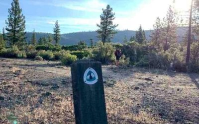 PCT: Day 97