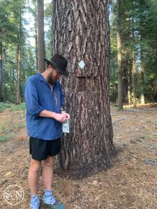 PCT Southbound
