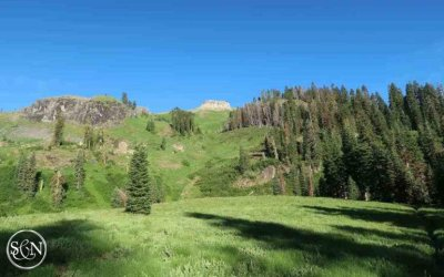 PCT: Day 113