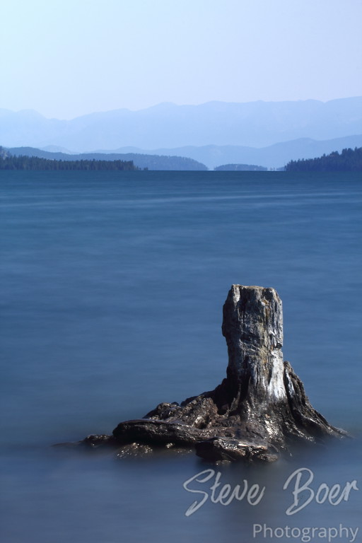 Old Stump in Flathead Lake
