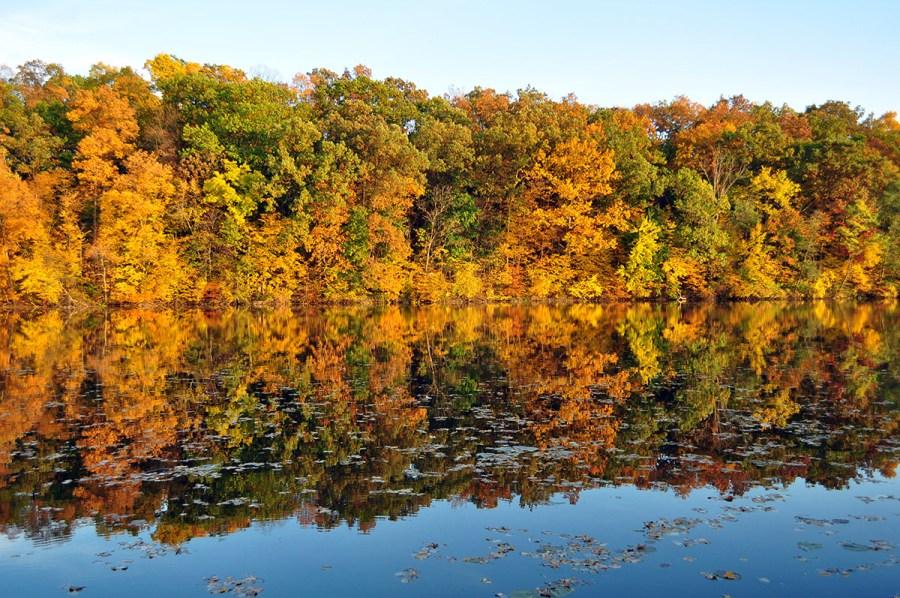 The Huron River, flowing through Ann Arbor, MI