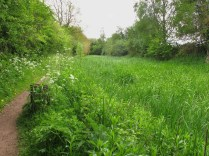 This was once a busy canal