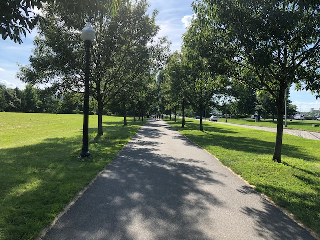 Long tree lined sidewalk, part 1