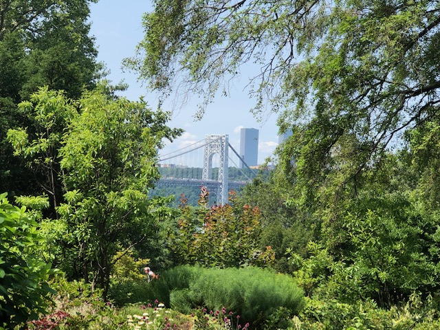 George Washington Bridge through the trees