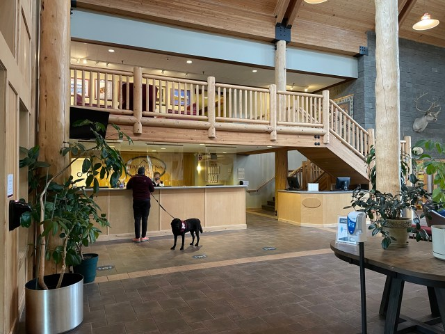 A massive lobby; Ash at the front desk on the far left and a wooden staircase starting at the far right, then going up and over his head.