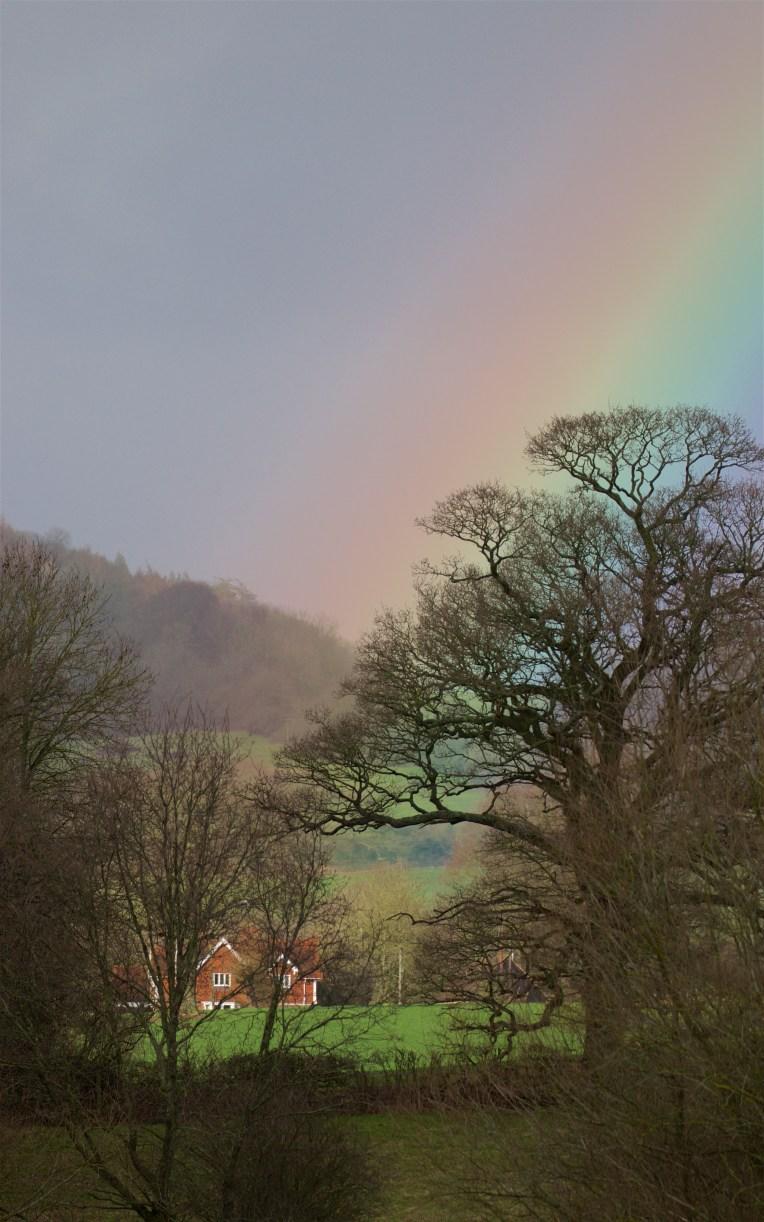 Rainbow light