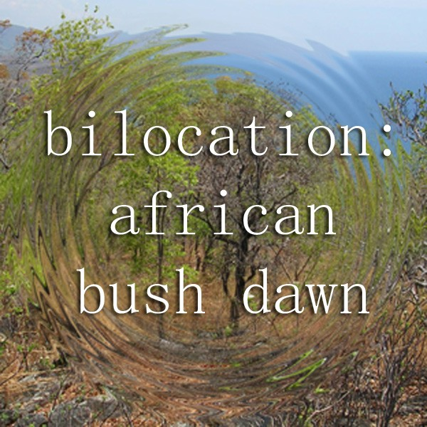 Bilocation African Bush Dawn Cover Art