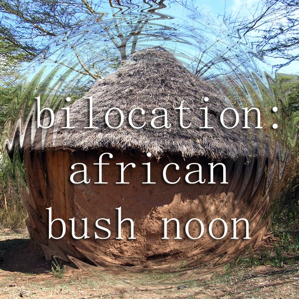 Bilocation African Bush Noon Album Cover Art