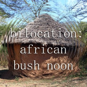 Bilocation: African Bush Noon