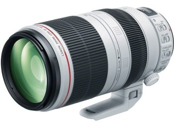 Canon EF 100-400mm L IS II USM