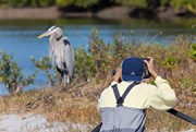 Florida Bird Photography Tours_Testimonials_4