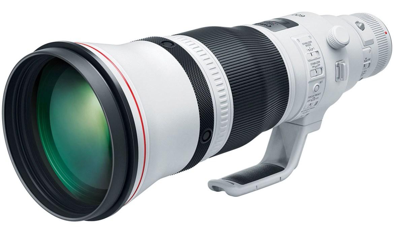 Canon EF 600mm f/4 L IS III USM - Bird Photography