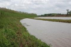 Brazos river, March 23, 2009