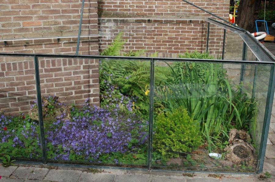My outdoor terrarium