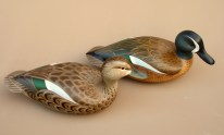 Decoys & Carvings - Bluewing Teal