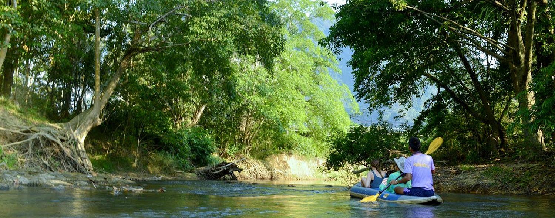why paddle upstream?