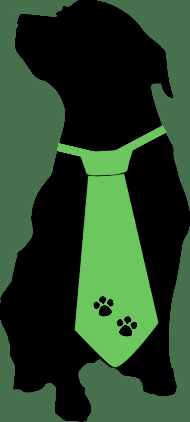 black dog publishing usa