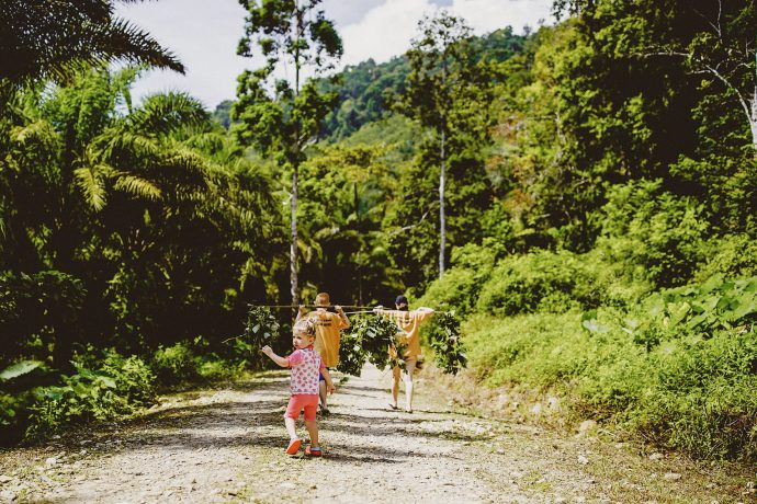 down the jungle track