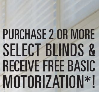 Free Basic Motorization