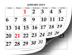 2019 calendar of availability
