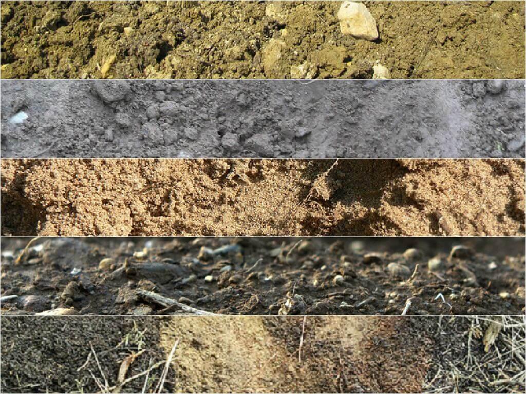 Soil Archives