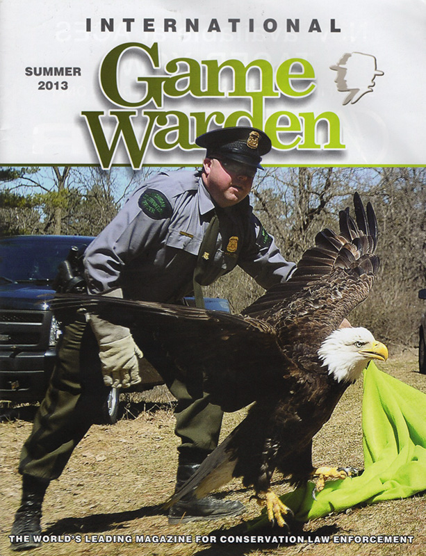 Photo of game warden releasing eagle