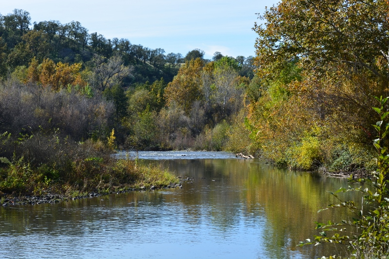 Lower Battle Creek as it would appear during the fall salmon run. Photo by Author Steven T. Callan.