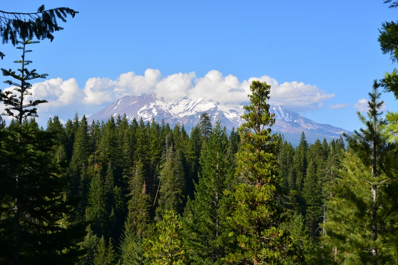 Nearby Mount Shasta was enshrouded with clouds the day of our hike. Photo by author Steven T. Callan.