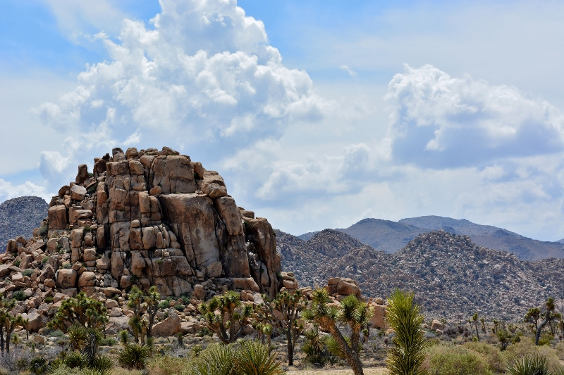 Joshua Tree National Park offers one scenic rock formation after another. Photo by Steven T. Callan.