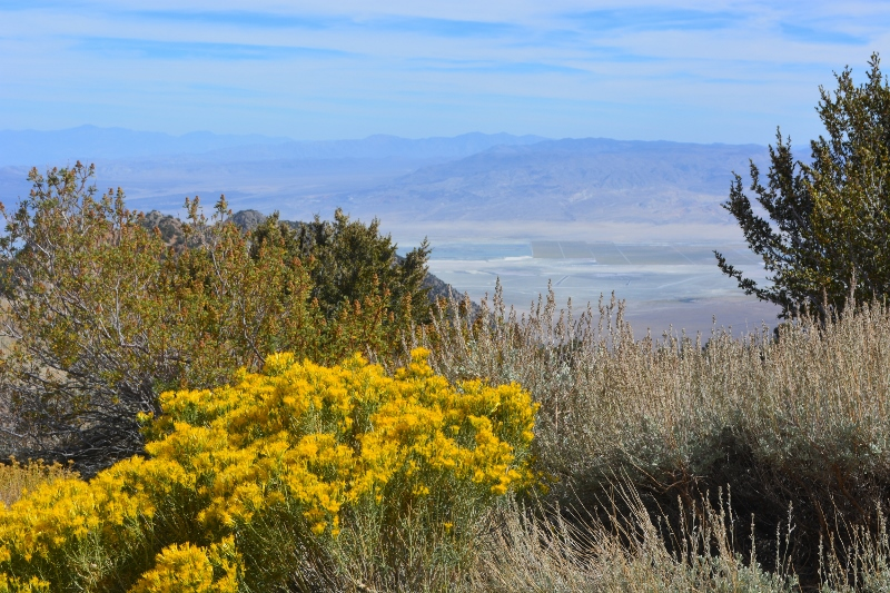 The view of the Owens Valley from Horseshoe Meadows Road. Photo by Steven T Callan.