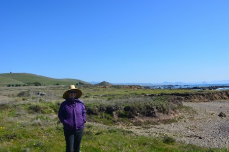The trails at Estero Bluffs State Park led us through acres of green grass and wildflowers to a coastline of small, isolated beaches. Photo by author Steven T. Callan.
