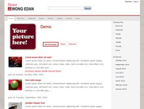 wong edan wordpress theme