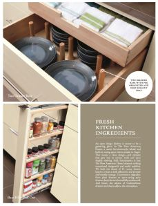 spice filler pull out and drawer organizer