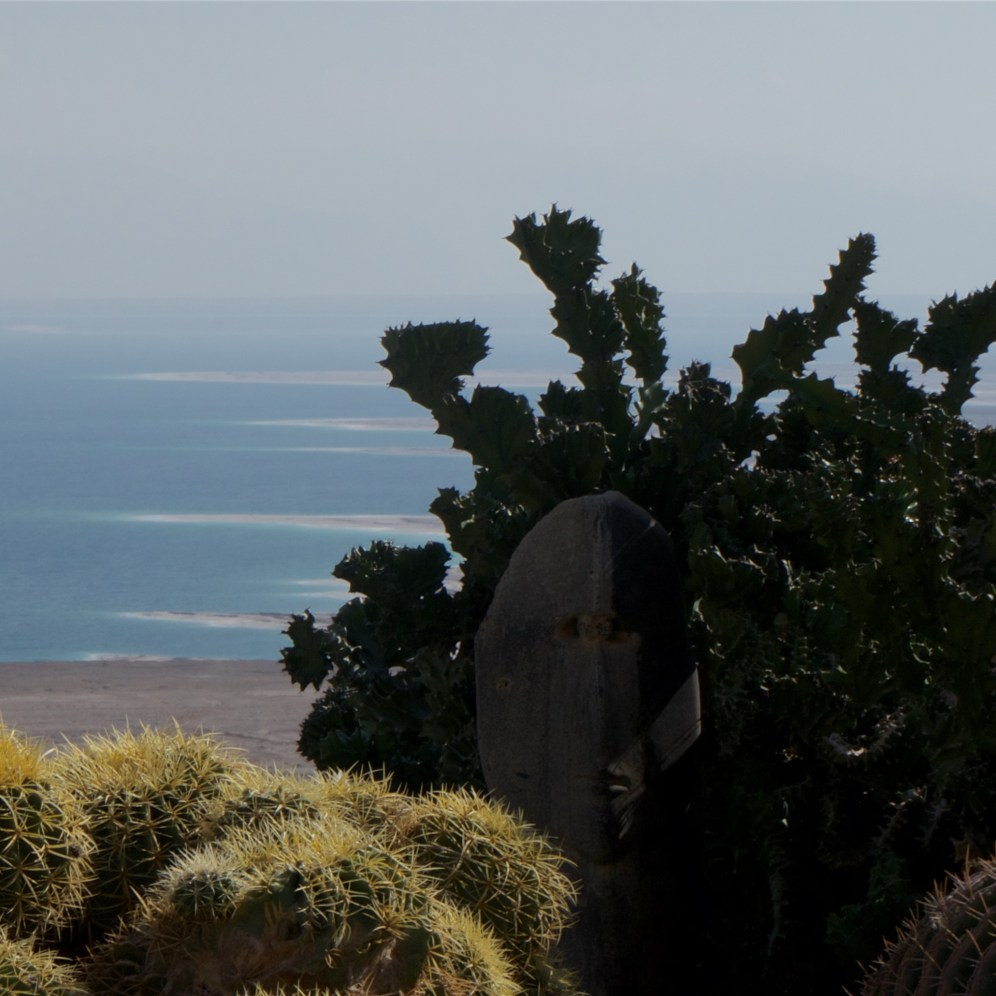 A view of the Dead Sea from Ein Gedi botanic garden