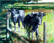 """On the Fence 16"""" x 20"""""""